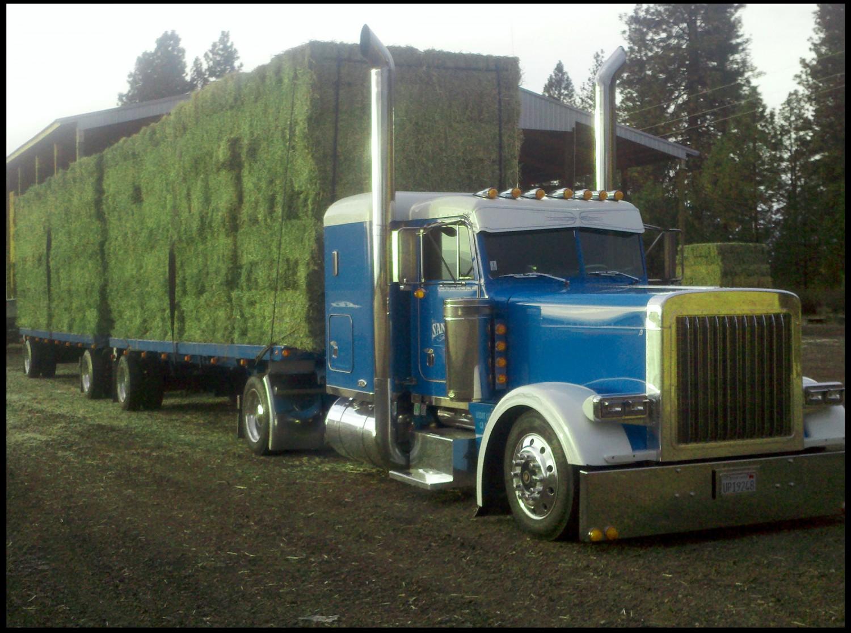 Loaded Alfalfa